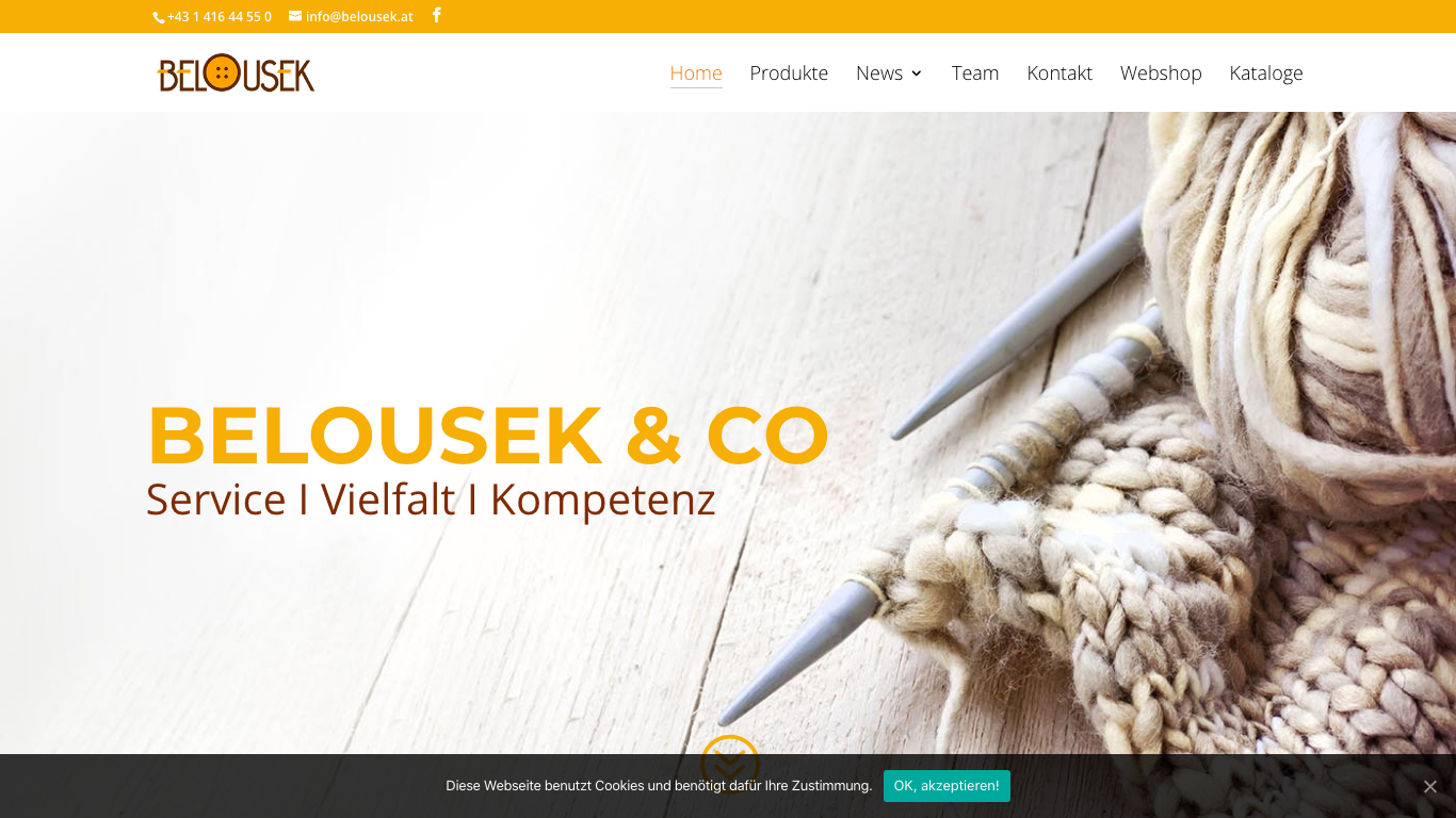 Leopoldine Belousek & Co. GmbH Screenshot of the company website